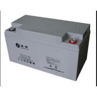 供应浙江圣阳蓄电池12V65AH代理商