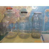 供应玻璃罐/塑料盖/550毫升/罐头瓶/蜂蜜瓶