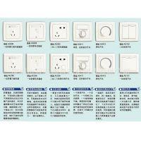电源插座AS225,二位二、三极带开关插座 10A (白色)