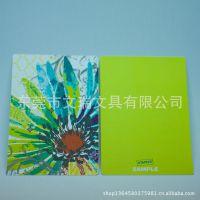 自主设计自主研发2013年新款笔记本 立体UV效果 封面封底 PP面板