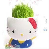 供应KT猫 草娃娃批发 青草种植草头娃娃 DIY卡通迷你栽培