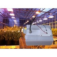 600w调光HID电子镇流器数字镇流器植物照明