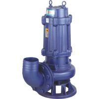 供应排污泵厂家WQ40-15-15-1.5污水污泥泵WQ50-10-10-0.75京天