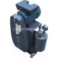 供应0.55KW回转式风机|回旋式风机|小型回转式鼓风机 AHC30S
