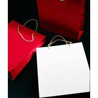 浙江温州纸袋印刷厂家/纸袋印刷/温州房地产纸袋印刷厂