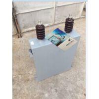 【BAM10.5/√3-300-1W】高压并联电容器厂家直销特价