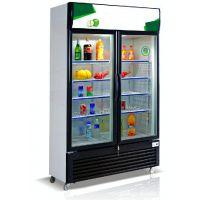 热销双门吧台柜 双门冰柜 冷藏陈列柜 制冷展示柜 冷藏展柜