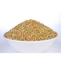 厂家直销农家自产 优质荞麦米/荞麦仁/三角荞麦批发 全国包物流费 量大从优