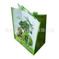 厂家直销:印花手提编袋 购物袋 广告袋