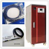 12KW小型电蒸汽清洗机