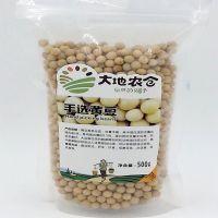 厂家直销 贴牌OEM代加工真空包装黄豆 豆浆专用黄豆批发 350g/包 包运费 量大从优