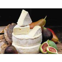 荷兰多利是马达加斯加牛奶巧克力上海专线进口报关代理