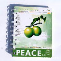 批发 基督教礼品 日用品 和平-圣灵果子笔记本
