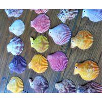 纯天然海螺贝壳彩色扇贝片工艺品原材料批发鱼缸装饰婚庆拍摄道具图片