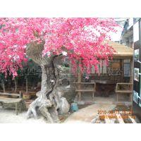 专业制作塑树,景观树,生态树