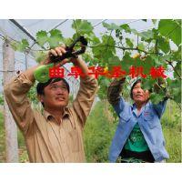 手动高质量绑蔓器家用便携式绑扎机番茄绑枝机