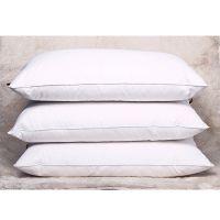 厂家批发羽毛枕芯 网销爆款全棉防羽布羽绒枕芯 优质正品枕头促销