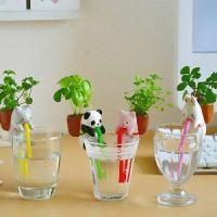DIY种植 渴渴吸里迷你创意小植栽动物尾巴吸水植物