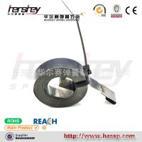 供应定力发条弹簧  涡卷弹簧 锰钢涡卷弹簧 扁线弹簧