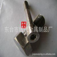 江苏厂家不锈钢内六角螺丝自攻螺丝汽车螺丝批发 不锈钢螺丝定制