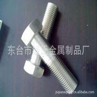 厂家专业生产201304316不锈钢重型加长螺栓 可定制非标件