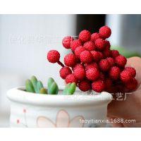 仿真水果 仿真迷你杨梅  多肉植物盆栽微景观摆件 厂家直销