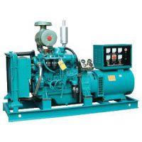 供应柴油发电机组 250kw 无刷 厂家直销 现货供应 山东潍柴发电机