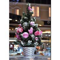 圣诞树小装饰树  圣诞节 酒店 吧台装饰小树 厂家直销 可定做
