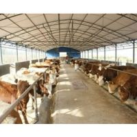 浅谈粪便处理和畜禽粪便无害化处理的再利用办法 13939253735