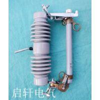 【RW11-12/100A高压熔断器参数】