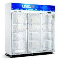 星星经济型三大门冷藏展示柜、SG1.6E3、冷藏啤酒。饮料展示柜