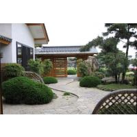 上海日式庭院设计、康桥日式庭院景观公司海湾别墅日式庭院绿化
