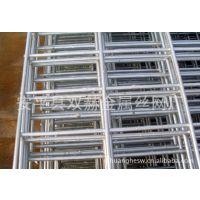 供应钢丝网电焊网片/钢丝展示架电焊网片