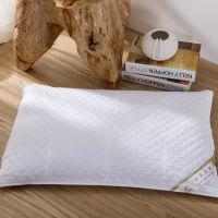 供应 枕头枕芯精品 荞麦枕 护颈枕 保健护颈枕头  厂家直销