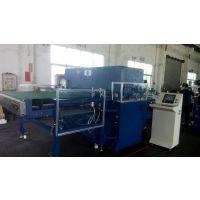 仿皮压花 纹机 真皮压花机 皮革 PVC PU卷料整板压花机 专业制造压花的厂家