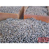 供应耐磨钢球/矿山选矿专用钢球/水泥研磨专用钢球