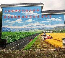 江西九江星子德安彭泽武宁修水手绘墙画彩绘墙绘涂鸦壁画制作!