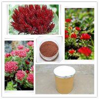 专业植提厂家现货直销 1%红景天甙 3%罗塞维皂甙 红景天提取物