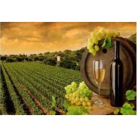 供应葡萄酒的种类 进口清关知识