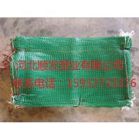 绿40*60CM 边坡植生袋,绿化护坡网袋 植生袋(生态袋)绿化工程