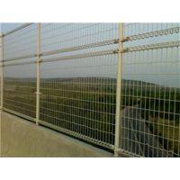 供应护栏网多少钱一米(图)、护栏网哪里好、护栏网厂家报价