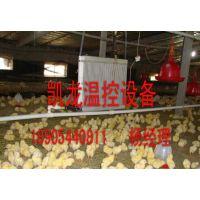 ?养殖锅炉/鸡舍锅炉/宁津县凯龙养殖温控设备厂