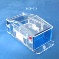 供应 北京六一DYCP-31A琼脂糖电泳仪/电泳槽/微型