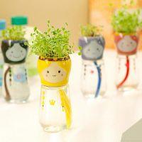 创意桌面盆栽 可爱泡泡妞三叶草卡通迷你微型水培植物盆栽