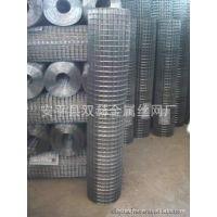 供应安平双赫 保温电焊网/抹墙电焊网/改拔电焊网