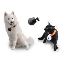 宠物数码相机 记录宠物眼里的世界 带给你不一样的欢乐