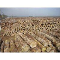 印尼柚木进口报关企业需要具备什么条件