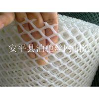 PE塑料挤出玩 白色塑料网 塑料养殖网