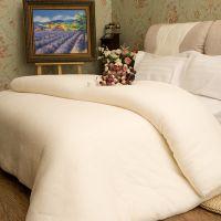 供应棉被厂家直销4斤单人双人棉被 夏被春秋被批发 价格实惠 量大价廉