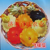常年销售观赏南瓜种子,十几个品种,无重样